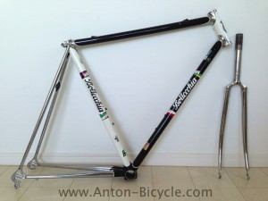 bottecchia_black_white_frame54