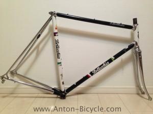 bottecchia-bw-frame-57