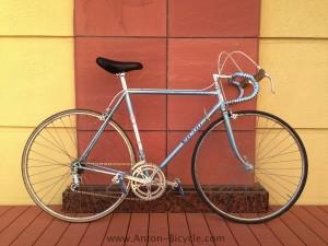 vicini-blue-assy-54-001
