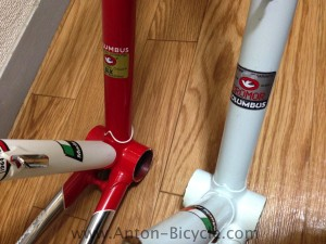 bottecchia-white-compare-010