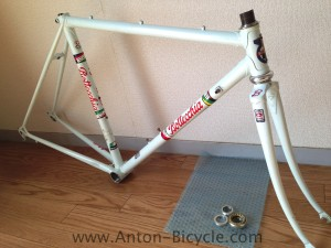 bottecchia-white-frame-in-01