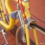 sedazzari-yellow-520