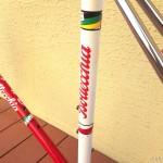 bottecchia-equipe-frame-52-red