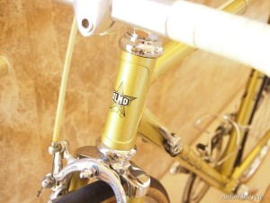 no555-olmo-gentleman-505-gold-073