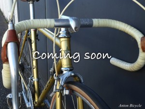 no555-olmo-gentleman-505-gold-soon