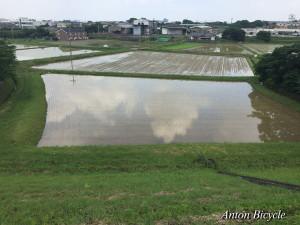 20160627-fishing-001