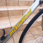 no860_marastoni_zeus