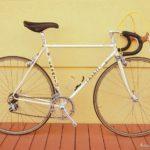 722-casati-perfection-51-beige