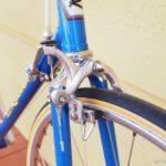 no753_rossin_special_1974_blue