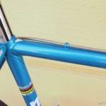 no867_f.moser_blue